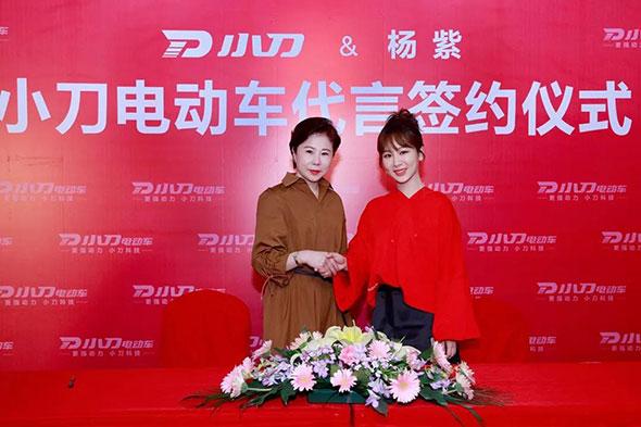 有实力,更优秀!祝贺代言人杨紫蝉联华语女演员榜16连贯!