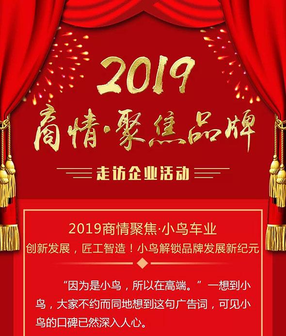 2019商情聚焦·小鸟:创新发展,匠工智造!解锁品牌发展新纪元!