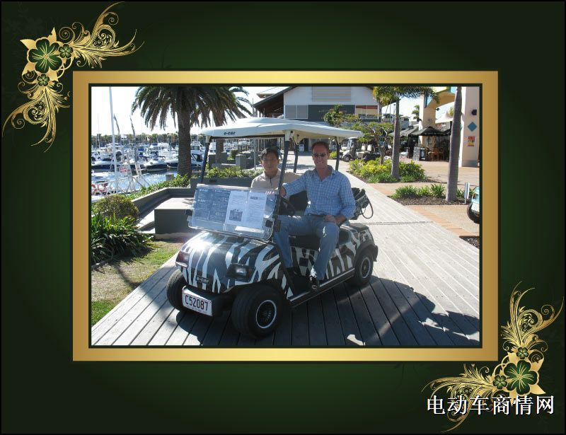 高尔夫观光车 电动代步车高清图片